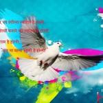 Holi Festival In Hindi मेरे शहर की होली