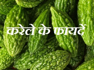 Karela Ke Fayde Benefits In Hindi