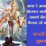 कजरी कजली तीज महत्व कथा पूजा विधि | Kajli Teej Kajari Vrat Mahtva Katha Pooja Vidhi In Hindi