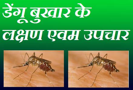 dengue fever | डेंगू बुखार