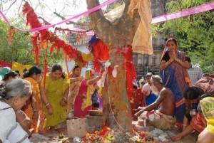 Akshaya Amla Aanvla Navami Puja Vidhi Katha Mahatva