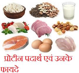Protein rich foods benefits