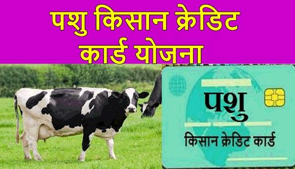 Pashu Kisan Credit Card Yojana