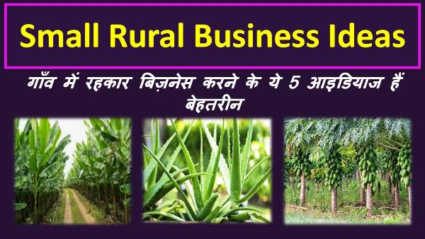 small rural business ideas