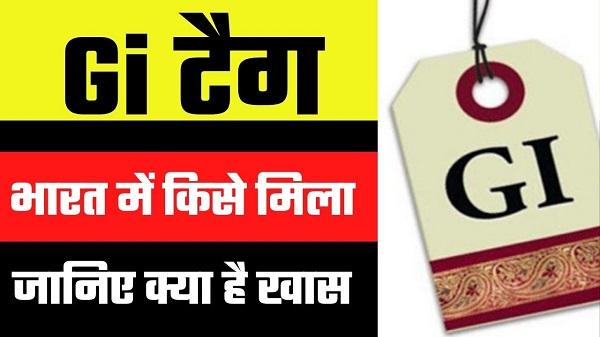 Gi tag kya hai in hindi